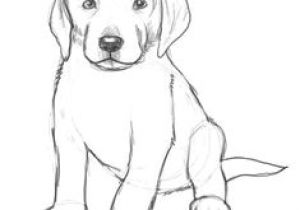 Easiest Drawing Of A Dog 101 Best Drawings Of Dogs Images Pencil Drawings Pencil Art