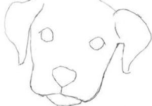 Easiest Drawing Of A Dog 491 Best Draw Dogs Images In 2019 Drawings Animal Drawings Draw