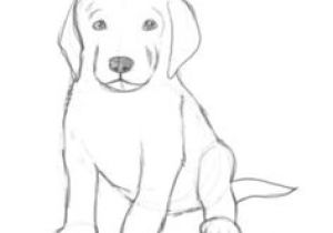 Easiest Drawing Of A Dog How to Draw A Puppy Drawing Drawings Puppy Drawing Sketches