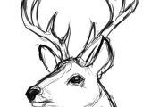 Easy Deer Head Drawing Pin Od Wika Na Szkice A I W 2019 Rysunki Pomysa Y Na