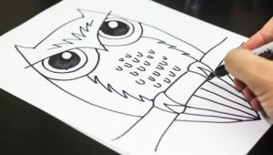 Easy Drawing for 8 Year Olds How to Draw An Owl Youtube