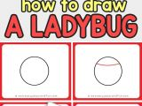 Easy Drawings Ladybug How to Draw A Ladybug Easy Peasy and Fun Pinterest Drawings
