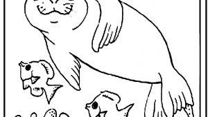 Easy Drawings Names Easy to Draw Fox Prslide Com