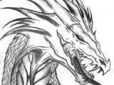Easy Drawings Of Dragons Heads 968 Best Dragon Drawings Images Mandalas Coloring Books