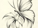 Easy Drawings Of Flowers and butterflies butterfly Flower by Davepinsker On Deviantart Pictures In 2019
