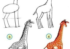 Easy Drawings Of Zoo Animals How to Draw Zoo Animals Easily Aktivity Pro Deti Matematika