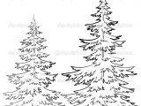 Easy Pine Tree Drawing Pine Tree Drawings Black and White Tree Drawings Pencil