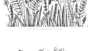 Easy Plant Drawing Botanical Line Drawings and Doodles Easy Doodle Art