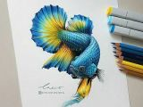 Easy Things to Draw with Colored Pencils Bright Coloured Fish with A Black Background Using Marker