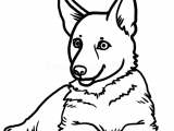 Easy Way Of Drawing A Dog How to Draw Puppy German Shepherd Dogs and Puppies Drawings In
