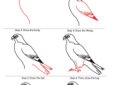 Easy Way to Draw Animals How to Draw Falcon Google Search Easy Drawings Bird