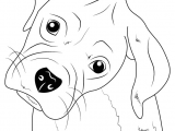 Easy Way to Draw Animals Learn How to Draw Boxer Puppy Face Farm Animals Step by