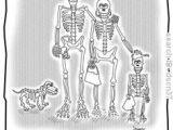 Easy X-ray Drawings 67 Best Radiology Humor Images Radiology Humor Doctor Humor
