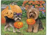 Easy Yorkie Drawings 161 Best Cartoon Yorkies Images Dog Paintings Drawings Of Dogs