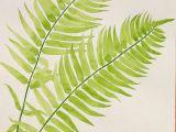 Fern Drawing Easy Botanical Drawings In 2019 Watercolor Plants Botanical