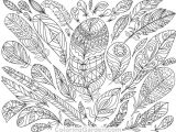 Flowers Drawing Sheets Adult Coloring Pages Colored Luxury Adultcolor Pages Feather