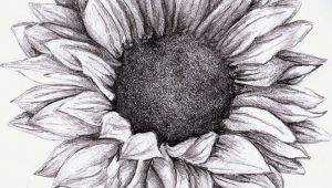 Flowers Drawing Sunflower Sunflower Drawing Google Zoeken Tattoos Tattoos Sunflower