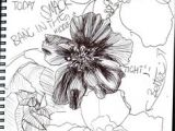 Flowers Drawing Tamil 1412 Nejlepa A Ch Obrazka Z Nasta Nky Flower Drawings Drawings