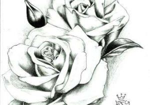 Flowers Garden Drawing Easy 27 Exotic Ideas to Draw Helpsite Us