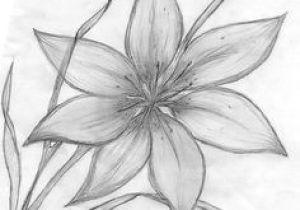 Flowers Garden Drawing Easy 61 Best Art Pencil Drawings Of Flowers Images Pencil Drawings
