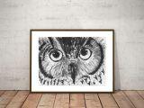 Forest Animals Drawing original Owl Drawing Nursery forest Birds Illustration Owl