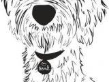 Goldendoodle Drawing Easy 13 Best Labradoodle Drawing Images Labradoodle Dog Art