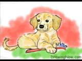 Goldendoodle Drawing Easy How to Draw A Golden Retriever Puppy