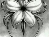 Good Drawings Of Flowers 61 Best Art Pencil Drawings Of Flowers Images Pencil Drawings