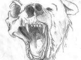 Half Human Half Animal Drawing Easy 17 Best Animal Skull Drawing Images Animal Skulls Animal