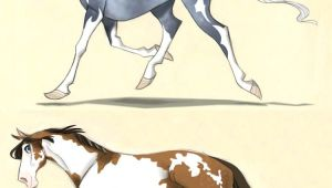 Horse Drawing Cartoons Pin by Jose Moreno On Animals Horses Drawings Character Design
