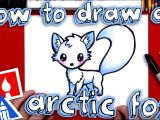 How to Draw A Hare Easy Step by Step How to Draw An Arctic Fox