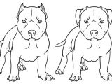 How to Draw A Pitbull Face Easy Step by Step 96 Best Dog Paint Images Dog Art Dog Paintings Pet Portraits