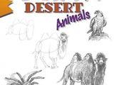 How to Draw Desert Animals Draw Desert Animals by Doug Dubosque Amazon Ae