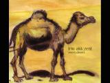 How to Draw Desert Animals Sweet Desert Von Trio Akk Zent