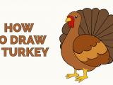 How to Draw Turkey Easy How to Draw A Turkey Really Easy Drawing Tutorial Easy
