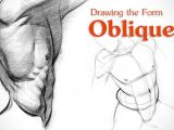 Human Anatomy Easy Drawing Drawing Tutorial Covering the form Of the Obliques Aka