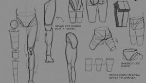 Human Anatomy Easy Drawing Pin On Anatomy Breakdown