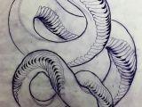Invertebrate Animals Drawing Schlangetattoo Skizzen Bedeutung Von Tatowierung Mit