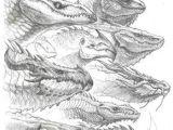L Drago Drawing Pin by Damon Jeter On Pencil Drawings Dragon Dragon Sketch