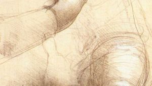 Leonardo Da Vinci Drawings Of Hands Leonardo Da Vinci S Study Of Hands