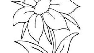Line Drawing Of Jasmine Flower Black Outline Drawing Flower White Flowers Free Drawing