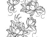 Line Drawing Of Lotus Flower Japanese Lotus Tattoo Design Creative Commons attribution