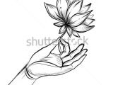 Line Drawing Of Lotus Flower Lord Buddha S Hand Holding Lotus Flower isolated Vector