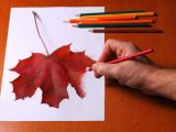 Maple Leaf Easy Drawing Colored Pencil Techniques for Beginners