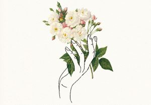 Nice Drawings Of Roses Holding Flowers Design Pinterest Drawings Art and Illustration