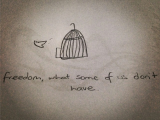 Nucleus Drawing Easy Simple Sketch Bird Flying Out Of Cage Freedom What some