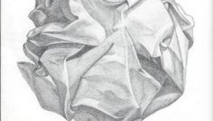 Observational Drawing Of A Rose 75 Best Observational Drawing Images In 2019 Drawings Pencil
