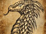 Oldest Drawings Of Dragons Ancient Dragon by Dragonicwolf On Deviantart Dragons Portraits