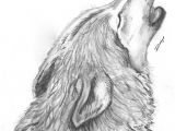 Pencil Drawing Of A Wolf Pin by Margaret Luke On Wolves Wolf Drawings Pencil Drawings