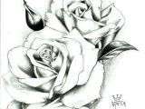 Pic Of A Drawing Of A Rose 27 Exotic Ideas to Draw Helpsite Us